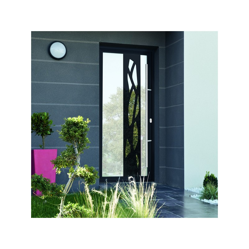 Porte d 39 entr ee vitr e cristallin for Porte interieure transparente